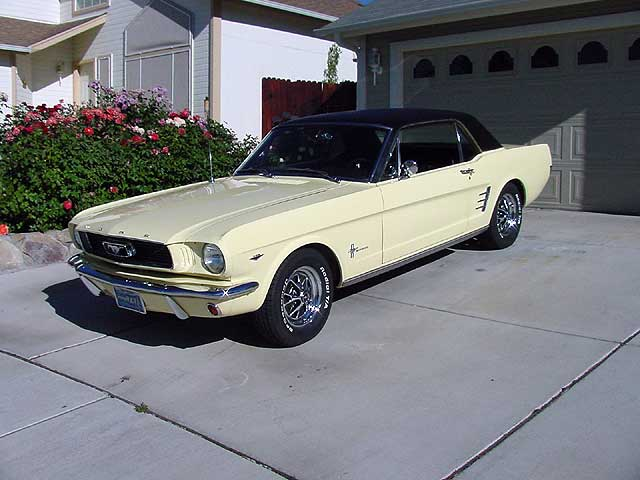 66 Mustang Fastback >> Customer's Cars!